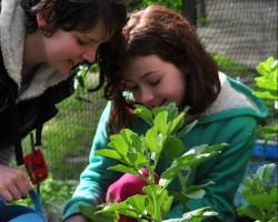 Girls gardening small