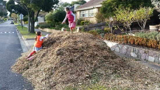 truckload-of-free-mulch