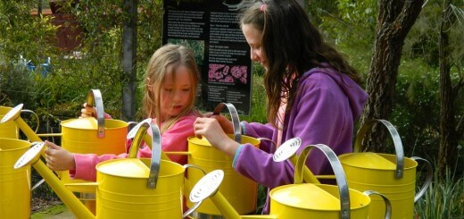 Watering at Cranbourne gardens