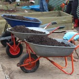 Getting ready to fill the veggie beds with fresh compost!