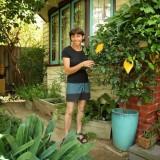 Garden designer Karen Sutherland's edible garden.