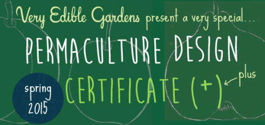 Very Edible Gardens presents a very special Permaculture Design Certificate (plus!)